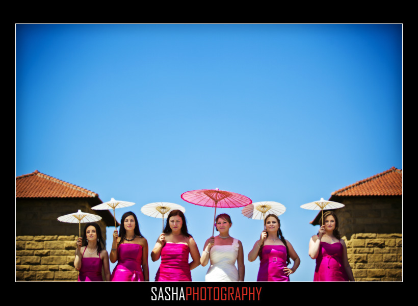bridal party photo stanford
