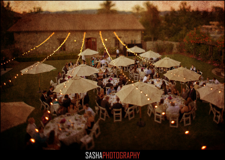 wine country sonoma wedding photography