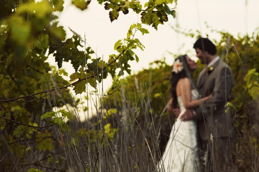 hans fahden vineyards wedding