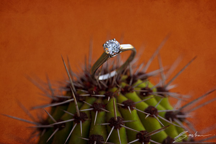 engagement ring cactus