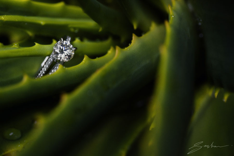 engagement ring green cactus
